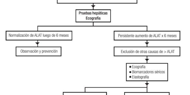 Enfermedad de hígado graso no alcohólico (EHGNA): revisión y